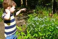 Kids Dig Plants