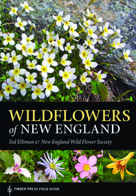 WildFlowers of New England.book.jpg