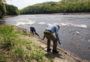 Astragalus restoration on Conn. River