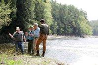 Astragalus CT River