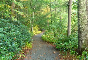 Garden in the Woods path-UliLorimer