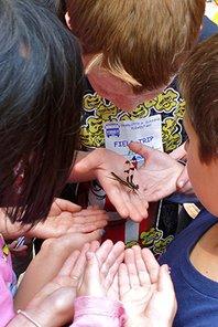 Kids_with_dragonfly_Garden_in_the_Woods_Dawn_Dentzer.jpg