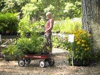 Plant Sales_Gary Sloan.jpg